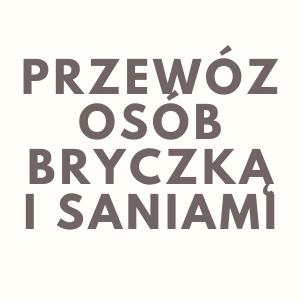 Przewóz Osób - Bryczką i Saniami Mariusz Burawski